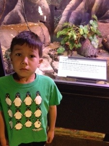 Sebastian next to a snake at the zoo. He does not like snakes.