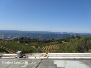 View from the top of Sky Pine Vineyard.