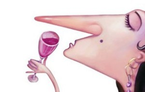 Woman Nose Wine