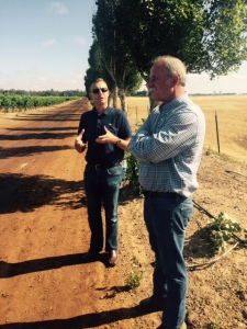 Robert Pirie (right), a vineyard manager and pivotal figure among Lodi wine growers, with Cameron King, Executive Director of the Lodi Winegrape Commission, at Clay Station Vineyard in the Borden Ranch Sub-Appellation.