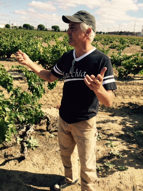 Tim Holdener (Macchia Wines) giving us a tour of the Noma and Schmeidt vineyards.