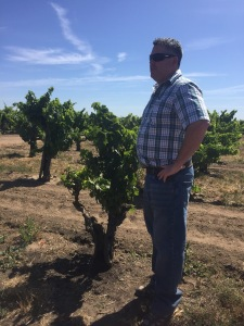 Kevin Phillips in the Bechthold Vineyard.