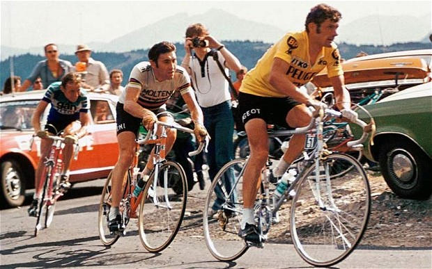 Bernard Thevenet with the Eddy Merckx (the Madeline Puckette of Cycling) on his wheel.