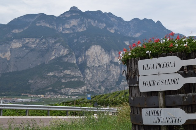 The Dolomites provide unique soils and character to the wines.