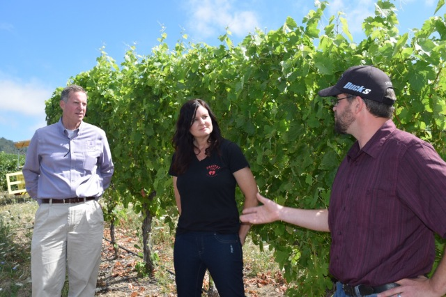 Scott (left), Rachael, and Andrew in the vineyard, talking Tempranillo.